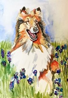 Dog 7